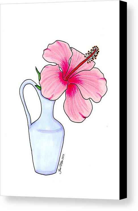 Drawings Canvas Print featuring the drawing Flower In Jug by Jane Miles