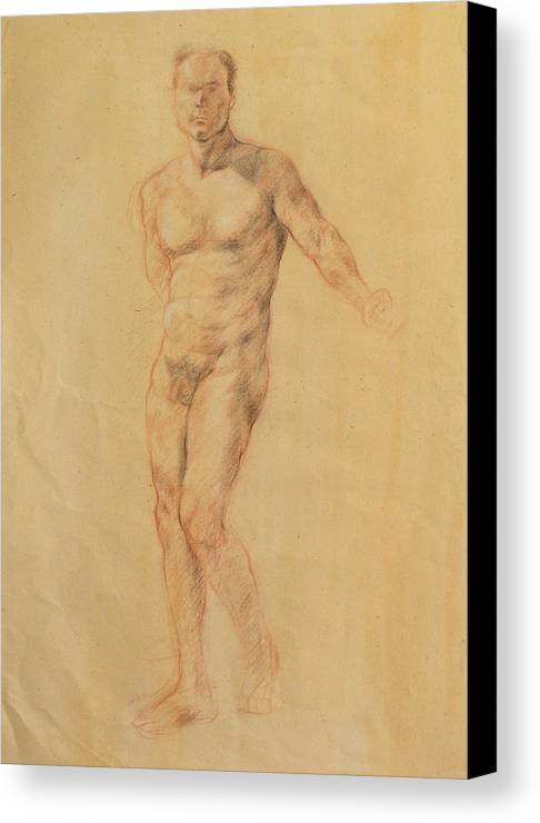 Drawing Canvas Print featuring the drawing Male Nude 2 by Becky Kim