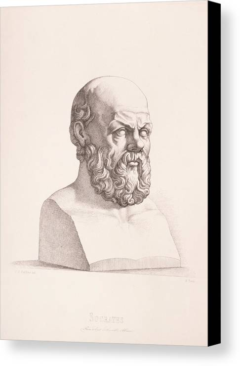 Male Canvas Print featuring the drawing Portrait Of Socrates by CC Perkins