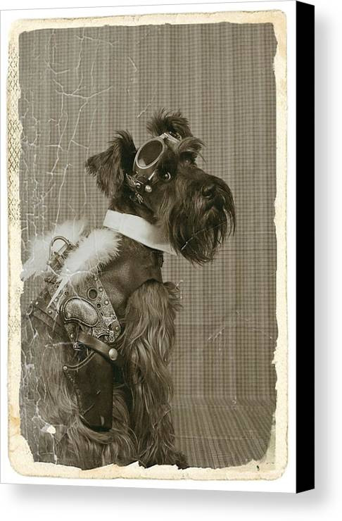 Schnauzer Canvas Print featuring the photograph Steampunk Schnauzer by Christine Chambers