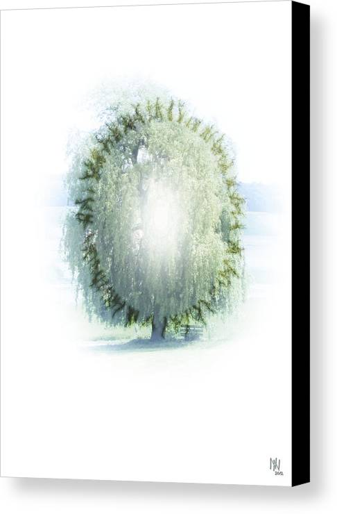 Enlightenment Canvas Print featuring the digital art Enlightment Of The Willow by Nafets Nuarb