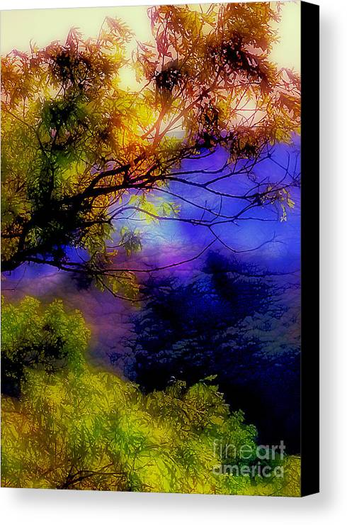 Arkansas Canvas Print featuring the photograph That Mountain Light by Judi Bagwell