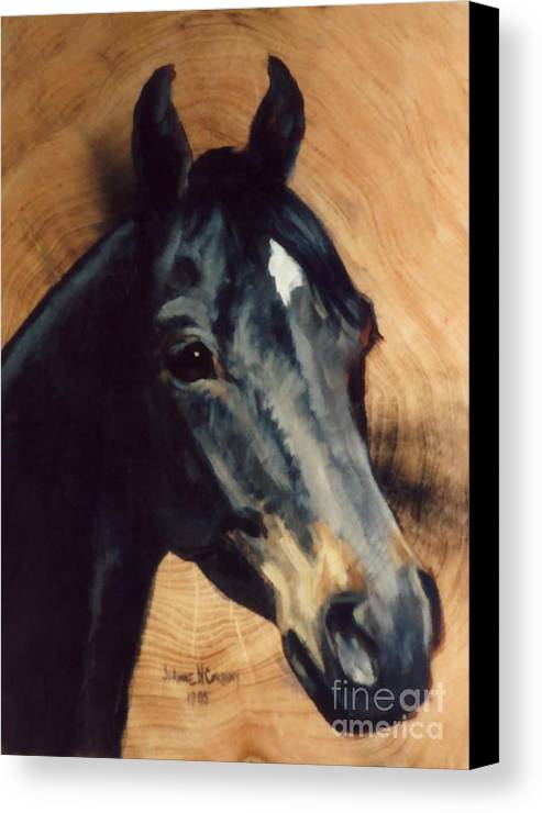 Brown Canvas Print featuring the painting Brown Horse Tingeys Star by JoAnne Corpany