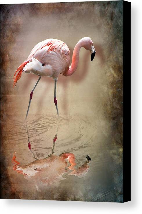 3d Canvas Print featuring the photograph Flamingo by Svetlana Sewell