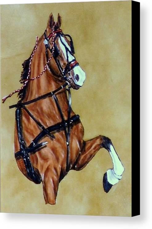 Horses Canvas Print featuring the painting Hackney by Lilly King
