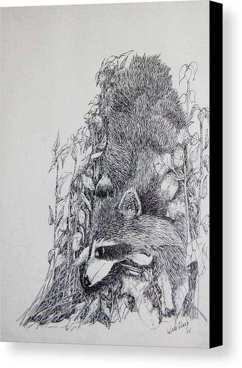 Animals Canvas Print featuring the drawing Out Of The Woods by Wade Clark
