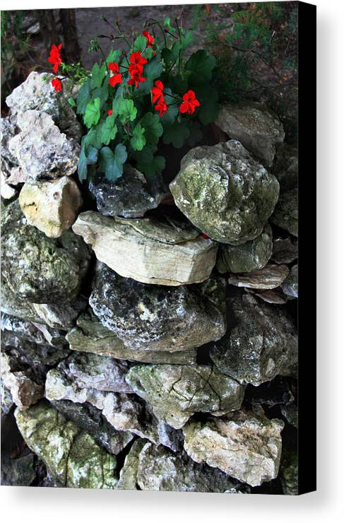 Red Flowers Canvas Print featuring the photograph Red Flowers And Rocks by Joanne Coyle