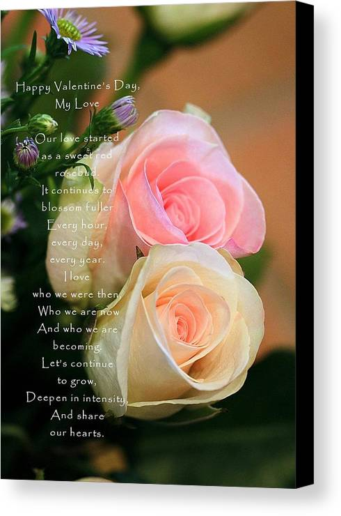 Card Canvas Print featuring the photograph Soft Pastel Roses by Ellen Barron O'Reilly