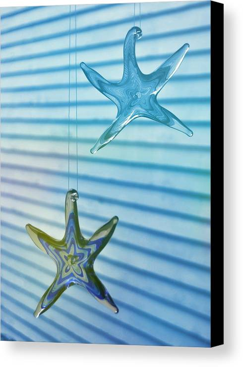 Star Canvas Print featuring the photograph Star Bright by JAMART Photography