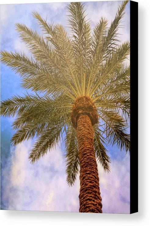 Vegas Canvas Print featuring the photograph View From The Pool by JAMART Photography