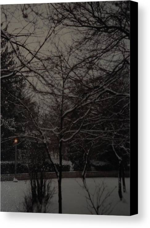 Lights Canvas Print featuring the photograph Winter Dusk by Rob Hans