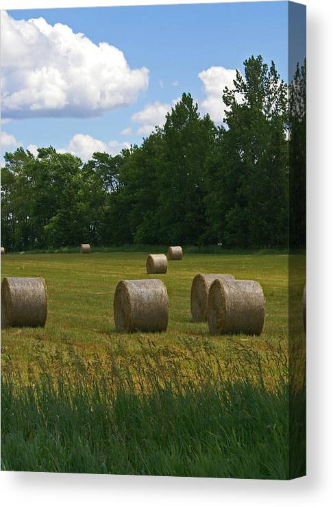 Field Canvas Print featuring the photograph Bales In The Field by Maria Keady