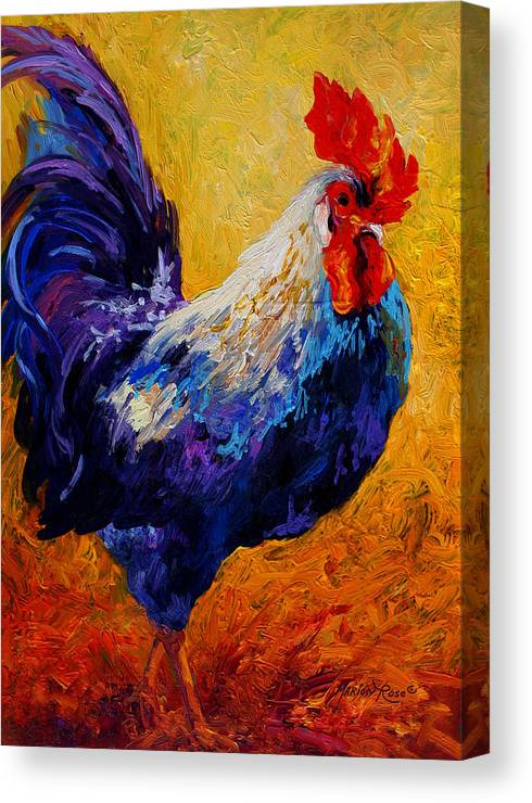Rooster Canvas Print featuring the painting Indy - Rooster by Marion Rose