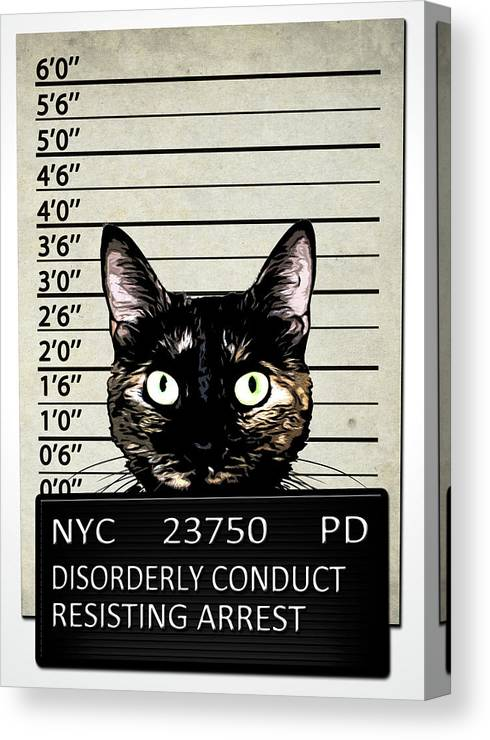 Cat Canvas Print featuring the mixed media Kitty Mugshot by Nicklas Gustafsson