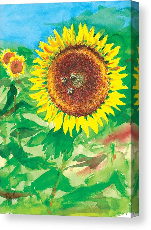 Sunflowers Canvas Print featuring the painting Sunflowers by Ray Cole