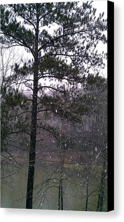 Winter Canvas Print featuring the photograph Lake Snowfall by Kenny Glover