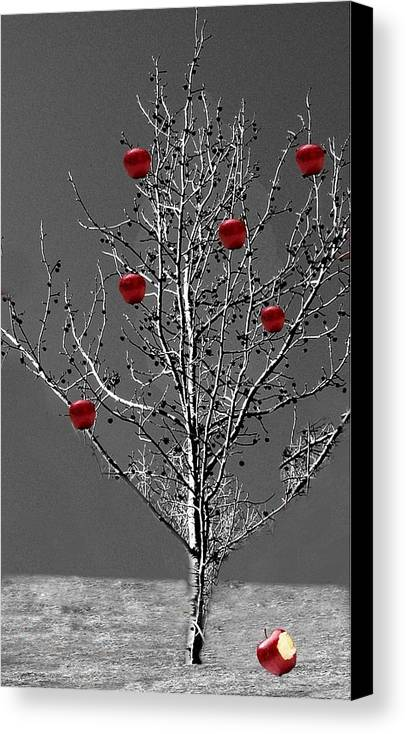 Tree Canvas Print featuring the digital art Apple Tree by Kenna Westerman