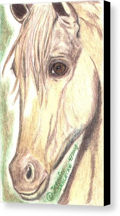 Horse Canvas Print featuring the drawing Flirt by Jennifer Skalecke