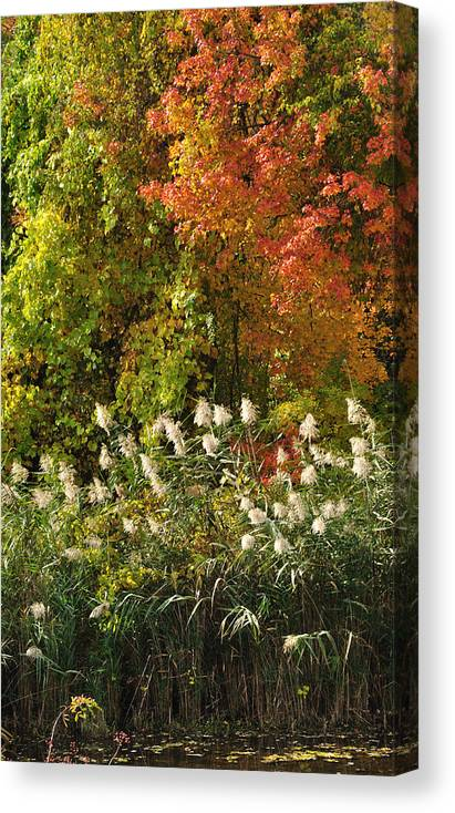Fall Canvas Print featuring the photograph Autumn Tranquility 3 by Frank Mari