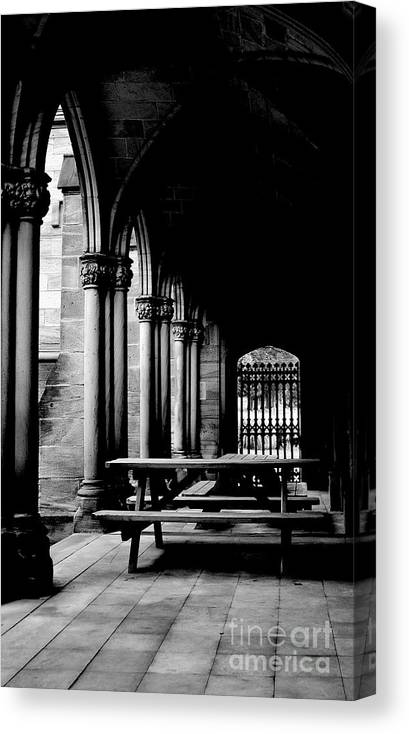 Digital Photo Canvas Print featuring the photograph None by J Henderson