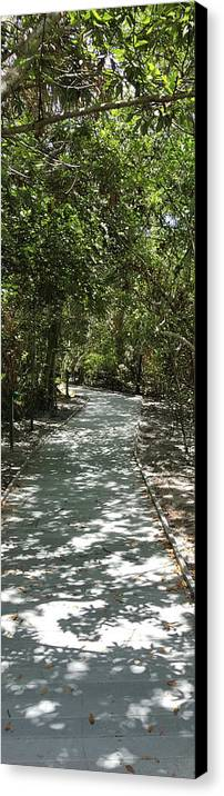Canvas Print featuring the photograph The Path by Natalia Castro