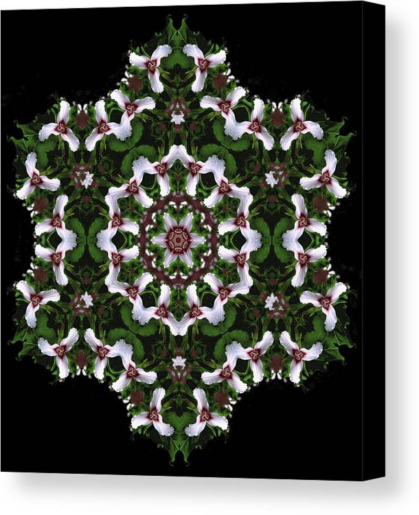 Mandala Canvas Print featuring the digital art Mandala Trillium Holiday by Nancy Griswold