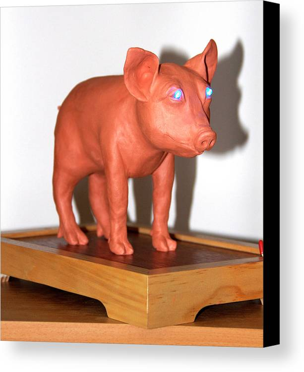 Pig Canvas Print featuring the sculpture Blue Eye Pigture by Yelena Rubin