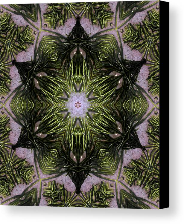 Mandala Canvas Print featuring the digital art Mandala Sea Sponge by Nancy Griswold