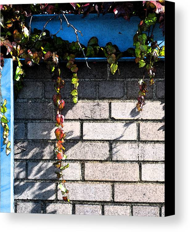Vines Canvas Print featuring the photograph Vines On Blue by Gary Everson