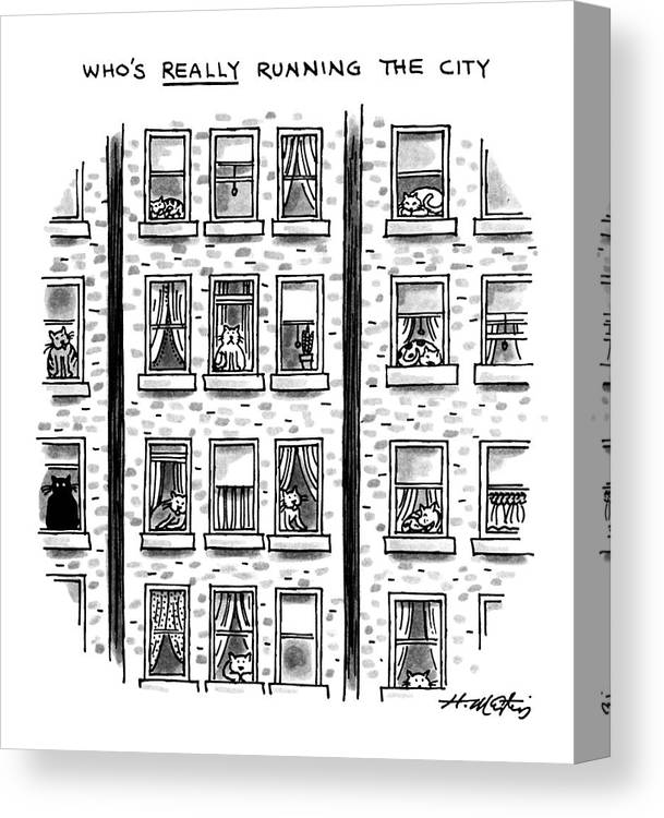 Who's Really Running The City: Title. Cats Look Out The Window Of An Apartment Building.   Who's Really Running The City: Title. Cats Look Out The Window Of An Apartment Building. Animals Canvas Print featuring the drawing Who's Really Running The City by Henry Martin