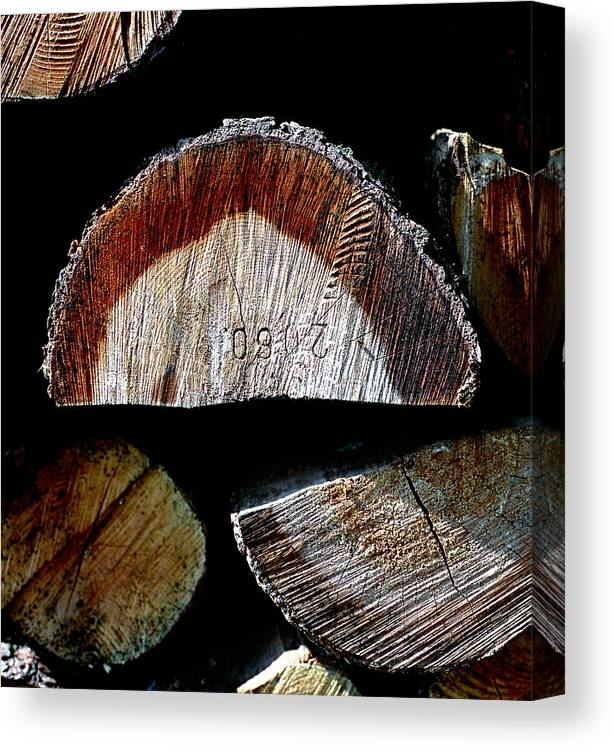 Stacked Timber Poles Canvas Print featuring the photograph Wood. Piled Up Logs. by Juan Carlos Ferro Duque