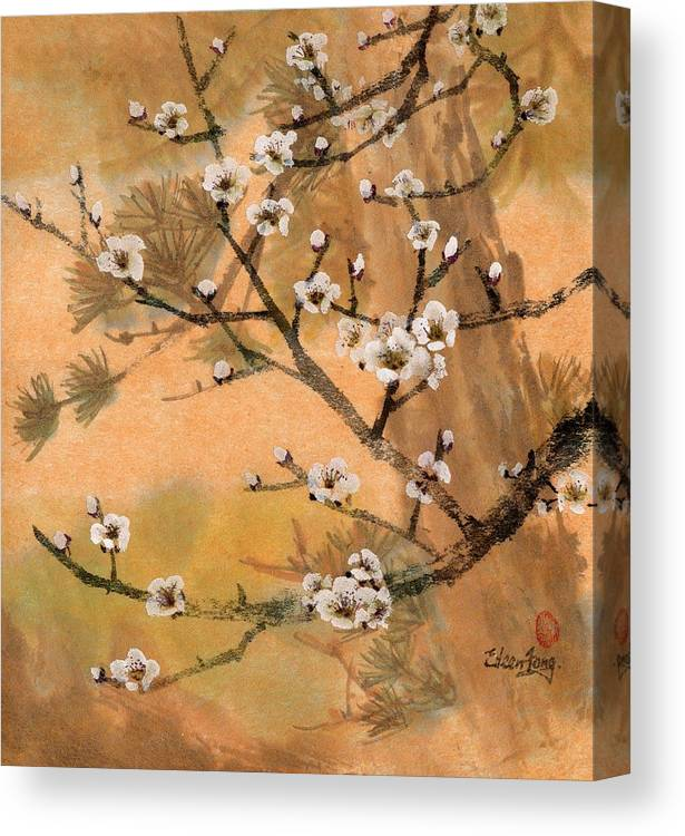 White Plum Blossoms Canvas Print featuring the painting White Plum Blossoms With Pine Tree by Eileen Fong