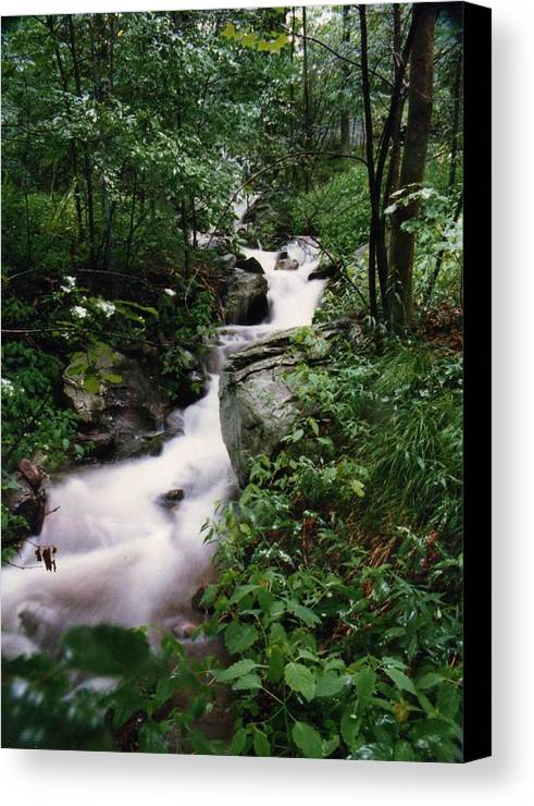 Photography Canvas Print featuring the photograph Watershed Gray by Cynthia Ann Swan