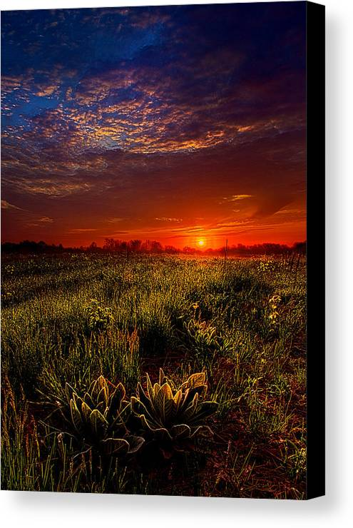 Horizons Canvas Print featuring the photograph Dreamland by Phil Koch