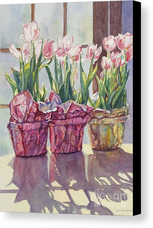 Tulips In Pots Canvas Print featuring the painting Spring Shadows by Jan Landini