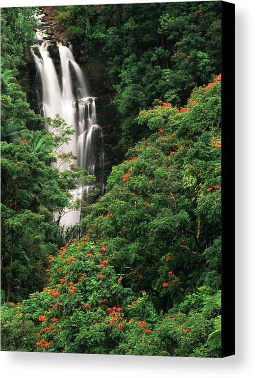 Adnt Canvas Print featuring the photograph Usa, Hawaii Islands, View Of Nanue by Stuart Westmorland