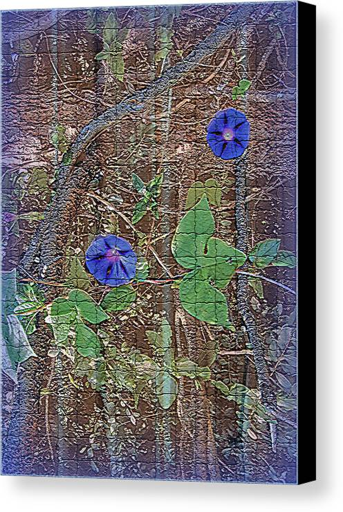 Digital Canvas Print featuring the photograph Glory In Blue by Larry Bishop