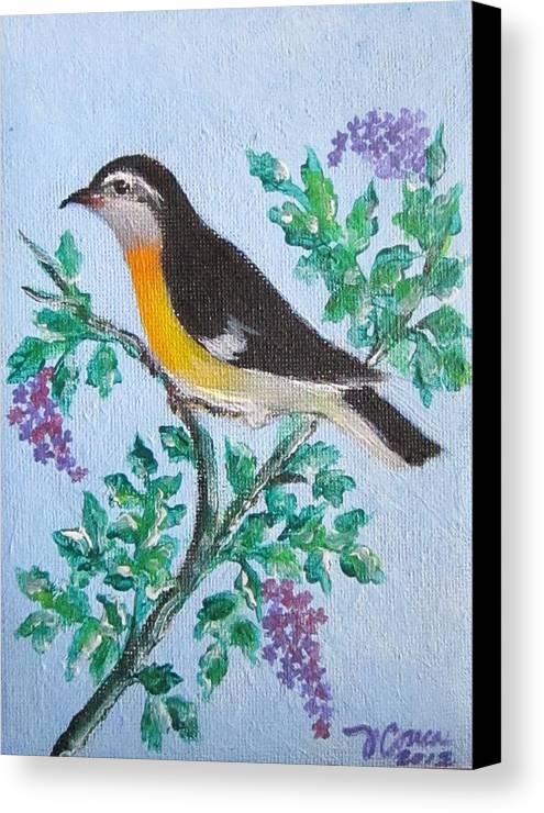 Reinita De Puerto Rico. Birds Canvas Print featuring the photograph Reinita De Puerto Rico by Judith Correa