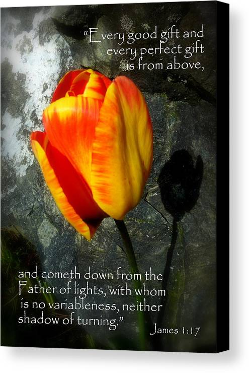 Cindy Canvas Print featuring the photograph Two Tulips Shadow Scripture by Cindy Wright