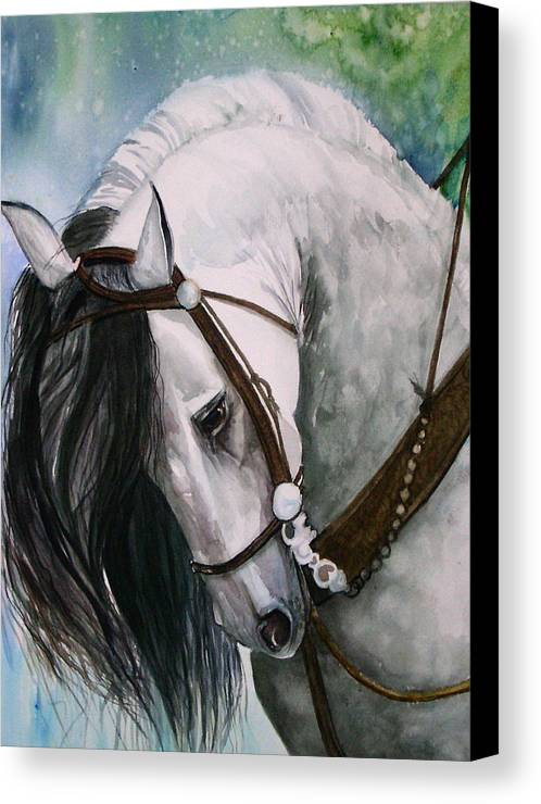 Andalusian Canvas Print featuring the painting Renaldo by Gina Hall
