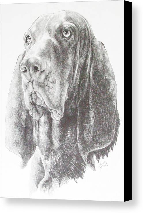 Purebred Dogs Canvas Print featuring the drawing Black And Tan Coonhound by Barbara Keith