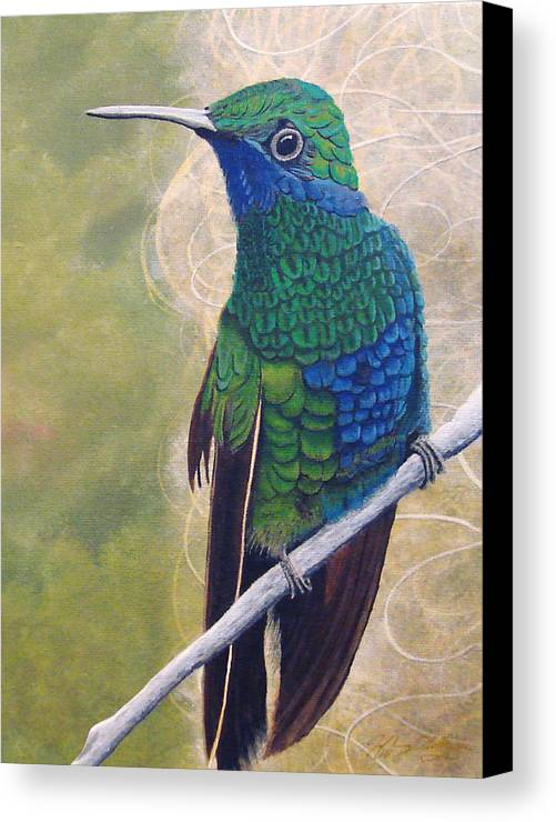 Humming Bird Canvas Print featuring the painting Beija Flor And Nest by Jeffrey Oldham