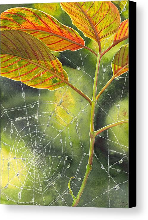 Web Canvas Print featuring the painting Dew Drop by Catherine G McElroy