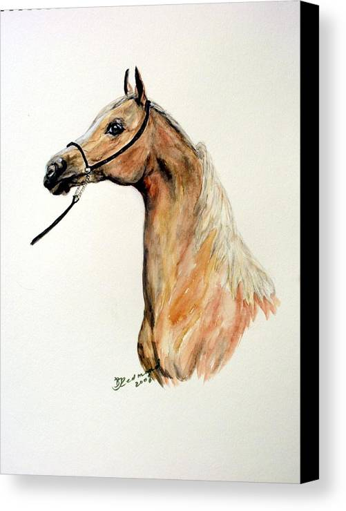 Horse Arabian Palominio Canvas Print featuring the painting Golden Arabian Horse by BJ Redmond