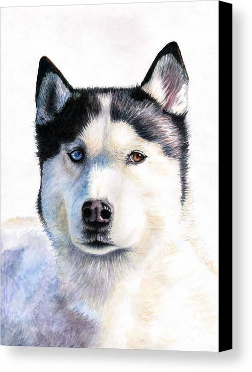 Dog Canvas Print featuring the painting Husky Blue by Nicole Zeug