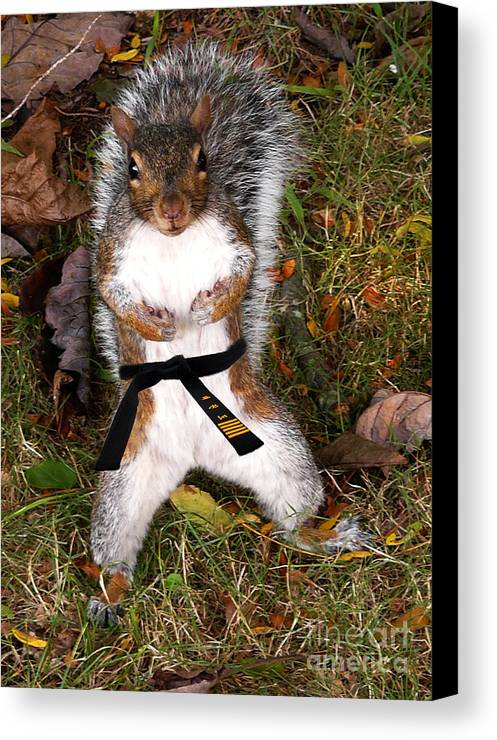 Squirrel Canvas Print featuring the photograph Make My Day by Jeff Breiman