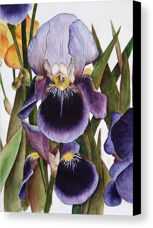Iris Canvas Print featuring the painting My Iris Garden by Mary Gaines