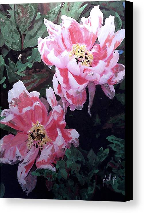 Flowers Canvas Print featuring the painting Peony Blooms by Jim Phillips