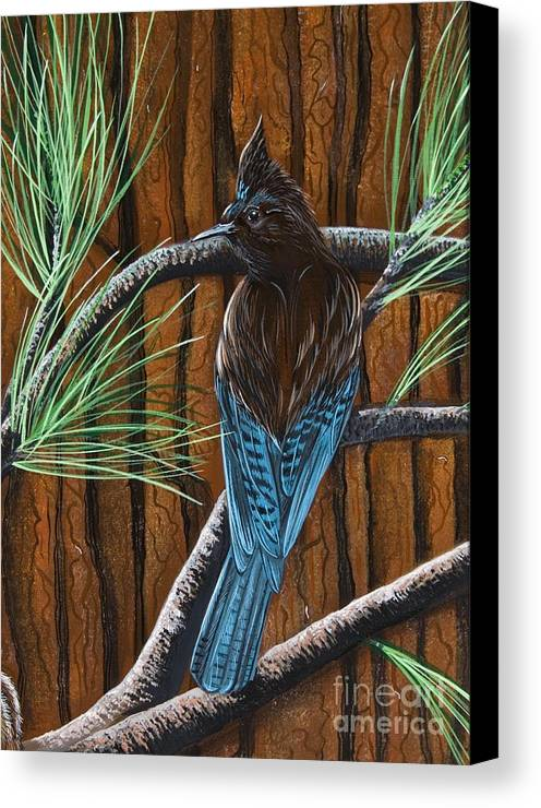 Bird Canvas Print featuring the painting Stellar Jay by Jennifer Lake