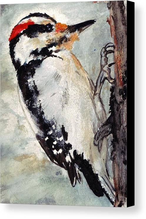 Hairy Woodpecker Canvas Print featuring the painting Tappity Tap by Debra Sandstrom